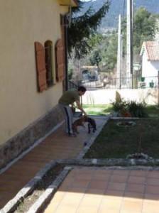 Casi y Phoeby en una casita rural en El Escorial (Madrid)