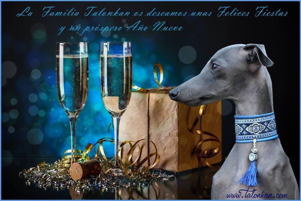 ¡¡¡Felices Fiestas!!!